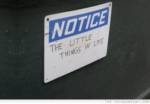 Notice things 2