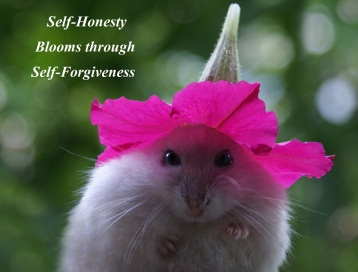 Mouse self honesty