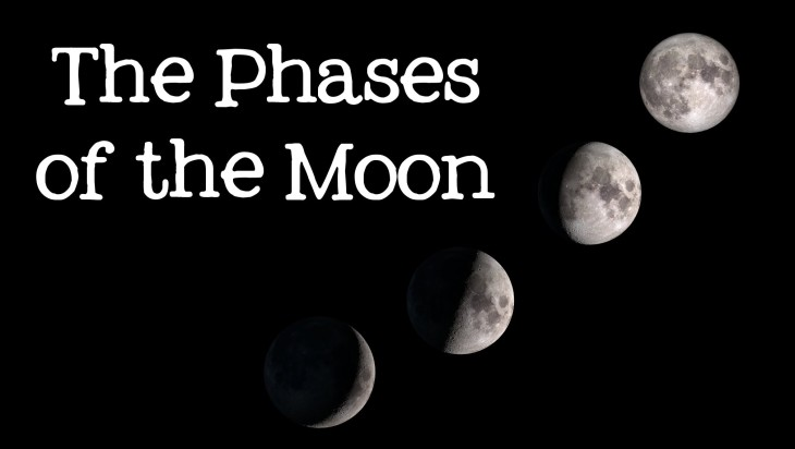 Moon the Phases