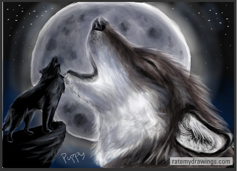 Wolf pupppy howling at moon